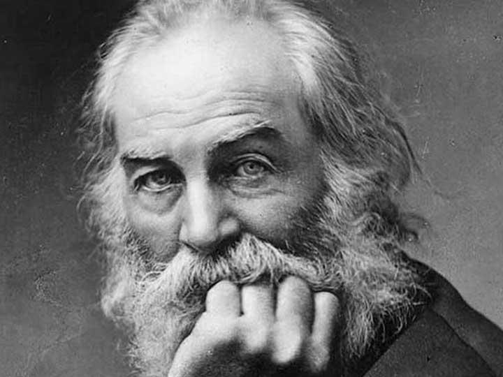 Walt Whitman Wiki Kawi